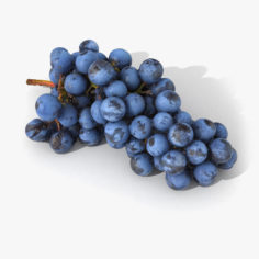 Grapes Lying Realistic 03