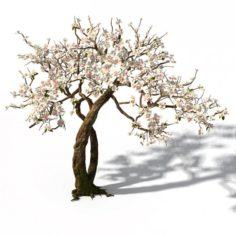 Peach Blossom Island – Trees 06 3D Model