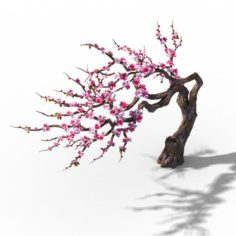 Peach Blossom Island – Peach Tree 03 3D Model