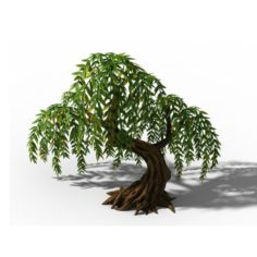 Peach Blossom Island – Plant – Willow 02 3D Model