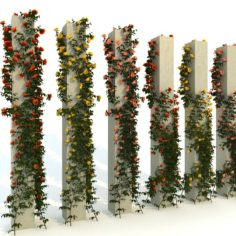 column with Roses 3D Model