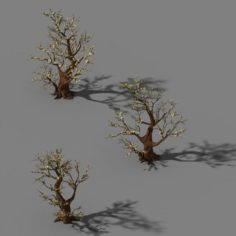 Peach Blossom Island – Plant – Big Trees 02 3D Model