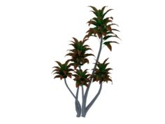 Mount Cliff – Small Plant 03 3D Model