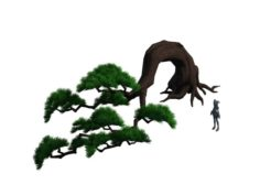 Cartoon Forest – Big Pine 06Trees 03 3D Model