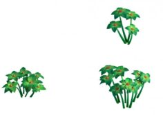 Plant Models – Small Plants 271 3D Model