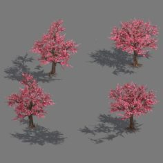 Daughter village plant – peach tree 032 3D Model