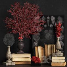 Coral Set 2                                      3D Model