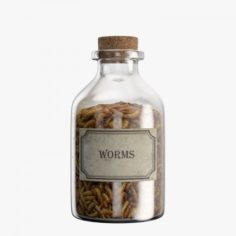 Bottle with Worms 3D Model