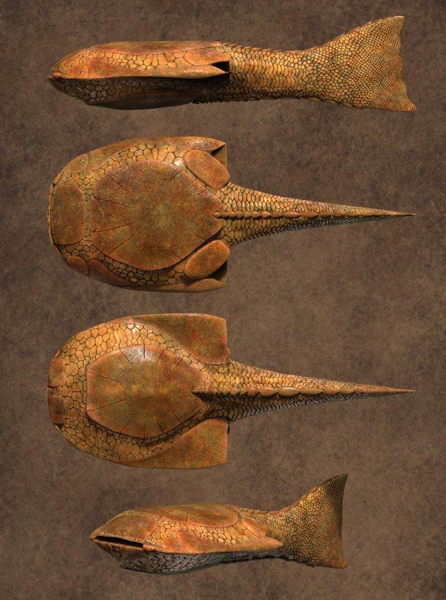 Drepanaspis 3D Model