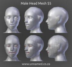 Male Head Model 3D Model