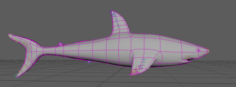 3D Shark 3D Model