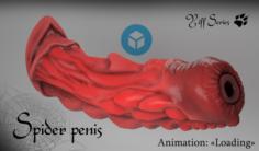 Spider penis 3D Model