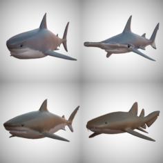 Sharks – 4 Pack 3D Model