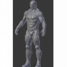 Soldier Crysis 3D Print Model