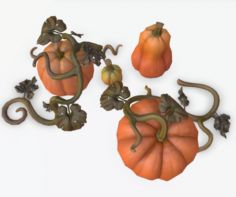 Cartoon Pumpkins 3D Model