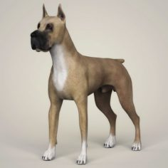 Realistic Great Dane Dog 3D Model