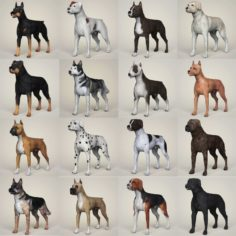 Dog Breeds Collection 3D Model