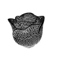 Tulip voronoi 3D Print Model