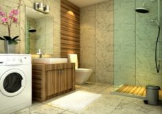 The home fashion bathroom of 1812 3D Model