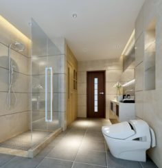 Family fashion sanitary toilet 1811 3D Model