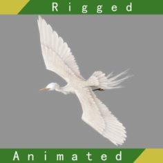 Egret Rigged Animated 3D Model