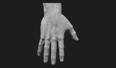 Perfect hand 3D Model
