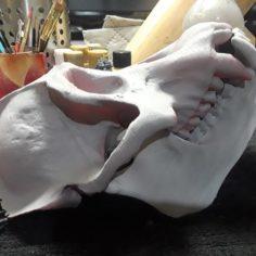 Replica Real Orangutan Primate Skull and Jaw 3D Print Model