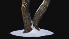 3D Photoscan Birch trunk with snow 4 model 3D Model