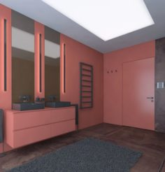 Modern style bathroom with a red wall 3D Model