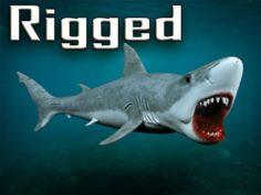 Rigged shard 3D Model