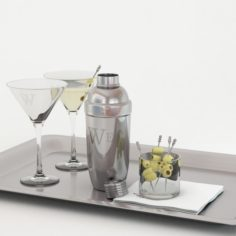 Cocktail with shaker 3D Model
