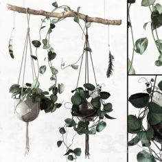 PLANTSET                                      3D Model