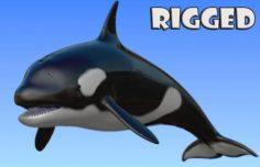 Rigged orca 3D Model