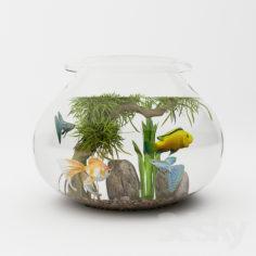 Aquarium                                      Free 3D Model