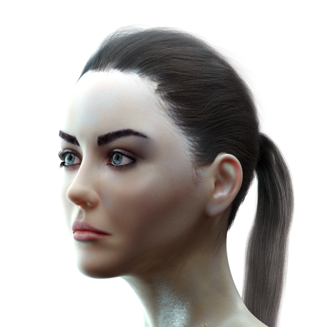 Female Head model 3D Model