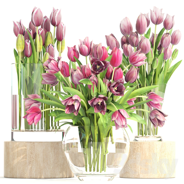 Collection of flowers 2. Tulips.                                      3D Model