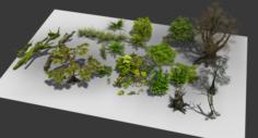 A group plants 3D Model