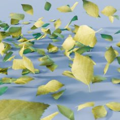 CGC Classic: Blowing Leaves						 Free 3D Model