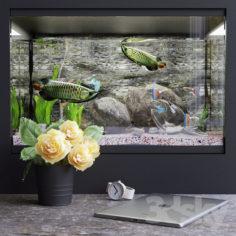 Decorative set with aquarium                                      3D Model