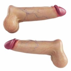 High Poly Realistic Penis 4 3D Model