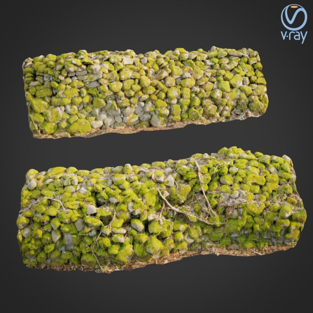 3d scanned nature stone wall D 3D Model