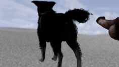 Male dog rigged 3D Model