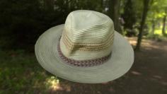 Hat low poly 3D Model