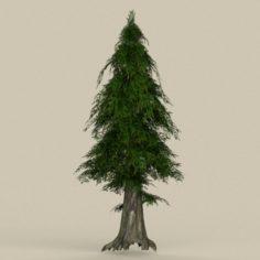 Game Ready Tree 28 3D Model