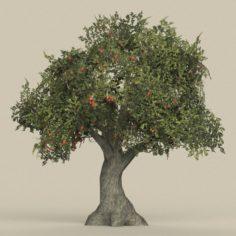Game Ready Tree 26 3D Model