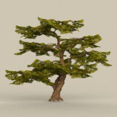 Game Ready Tree 20 3D Model