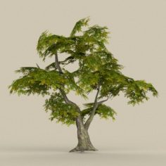 Game Ready Tree 30 3D Model