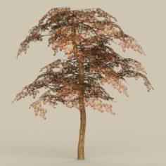 Game Ready Tree 19 3D Model