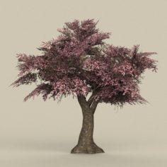 Game Ready Tree 34 3D Model