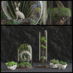 Florarium 3D Model